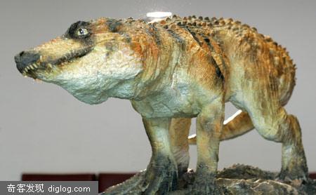 巴西发现新的史前食肉动物化石[组图]